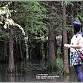 鈺展落羽松森林-2019-10-67.jpg