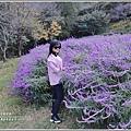 武陵農場墨西哥鼠尾草-2019-10-47.jpg