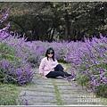 武陵農場墨西哥鼠尾草-2019-10-68.jpg