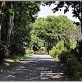 花蓮將軍府-2019-10-17.jpg