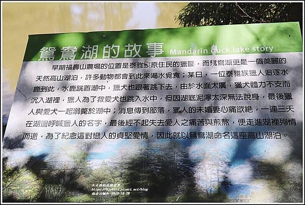 福壽山農場楓紅-2019-10-17.jpg
