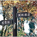 福壽山農場楓紅-2019-10-16.jpg