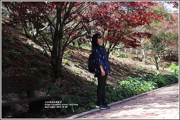 福壽山農場楓紅-2019-10-34.jpg