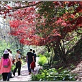 福壽山農場楓紅-2019-10-36.jpg