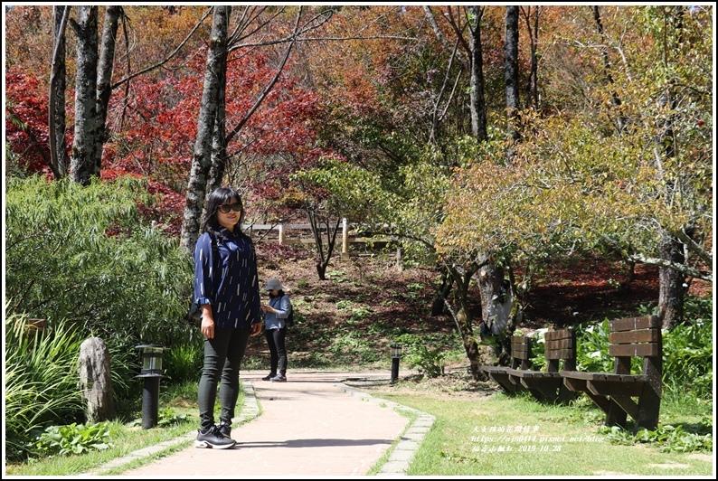 福壽山農場楓紅-2019-10-43.jpg