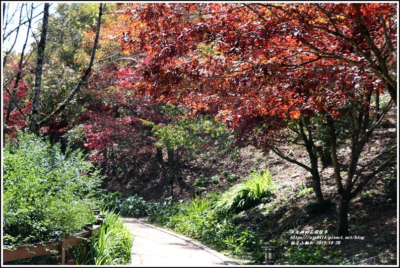 福壽山農場楓紅-2019-10-45.jpg