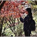 福壽山農場楓紅-2019-10-50.jpg