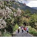武陵桃山瀑布-2019-10-02.jpg