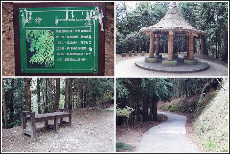 武陵桃山瀑布-2019-10-22.jpg