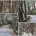 武陵桃山瀑布-2019-10-18.jpg
