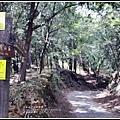 武陵桃山瀑布-2019-10-29.jpg