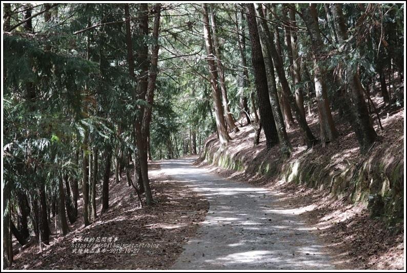 武陵桃山瀑布-2019-10-25.jpg