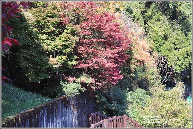 梨山楓之谷-2019-10-09.jpg