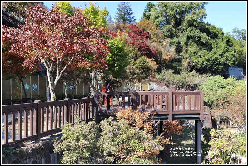 梨山楓之谷-2019-10-18.jpg