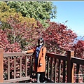 梨山楓之谷-2019-10-20.jpg
