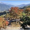 梨山楓之谷-2019-10-25.jpg