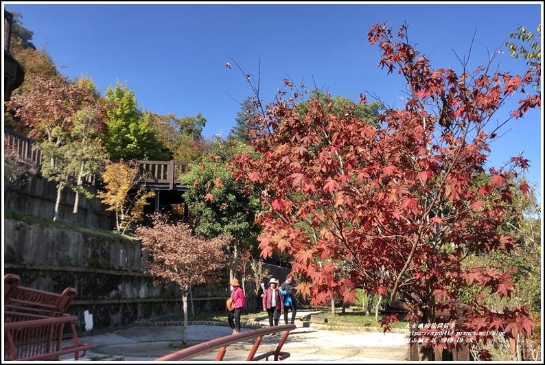 梨山楓之谷-2019-10-29.jpg