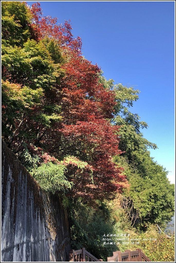梨山楓之谷-2019-10-26.jpg
