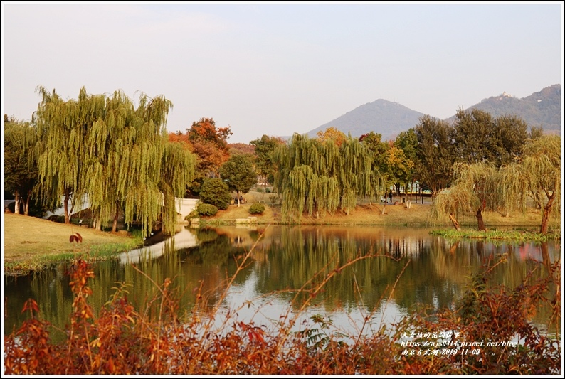 南京玄武湖-2019-11-06.jpg