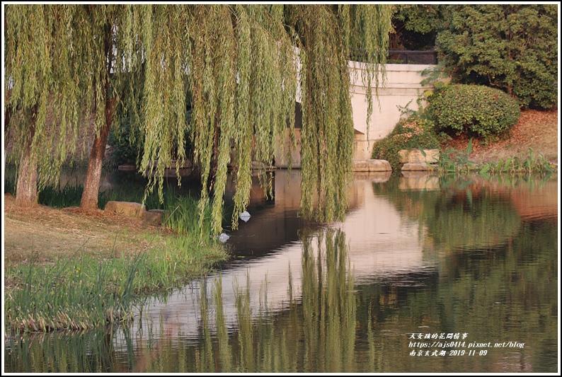南京玄武湖-2019-11-07.jpg