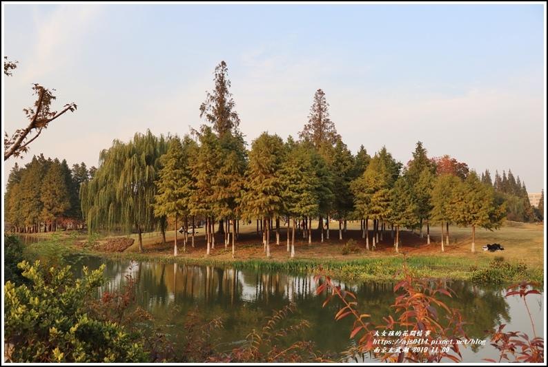 南京玄武湖-2019-11-08.jpg