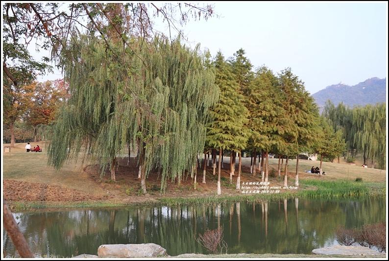南京玄武湖-2019-11-17.jpg