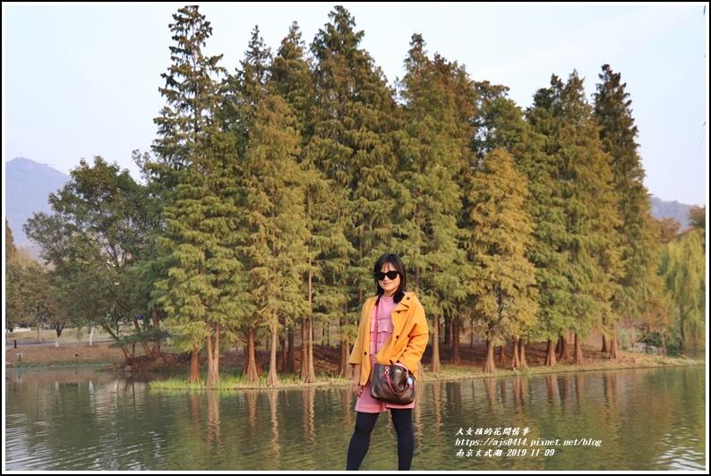 南京玄武湖-2019-11-30.jpg
