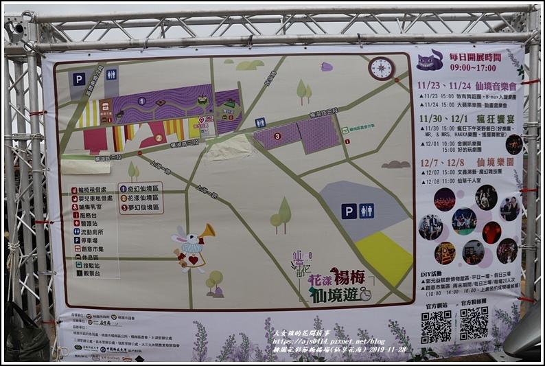 桃園花彩節梅楊場(仙草花海)-2019-11-29.jpg