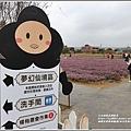 桃園花彩節梅楊場(仙草花海)-2019-11-32.jpg