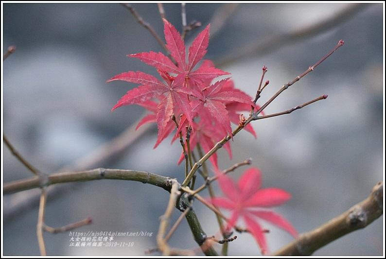 江蘇南京揚州個園-2019-11-68.jpg