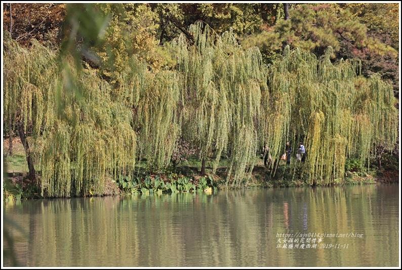 江蘇揚州瘦金湖-2019-11-101.jpg