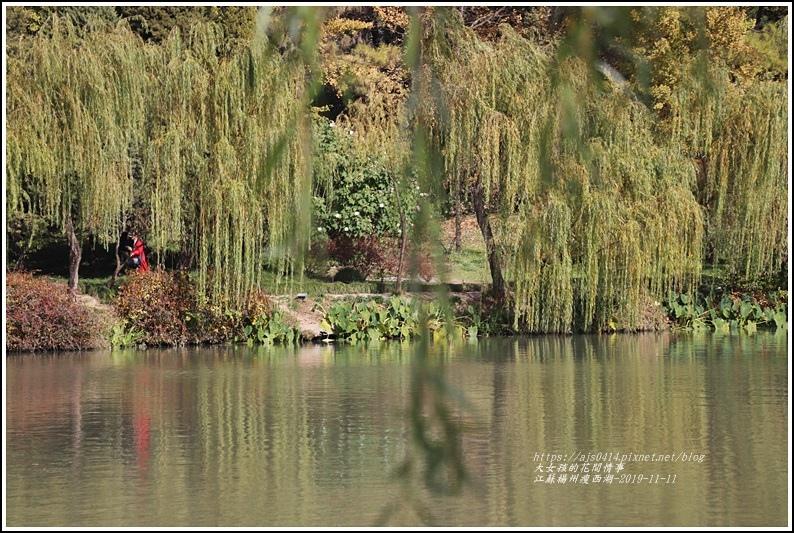江蘇揚州瘦金湖-2019-11-99.jpg