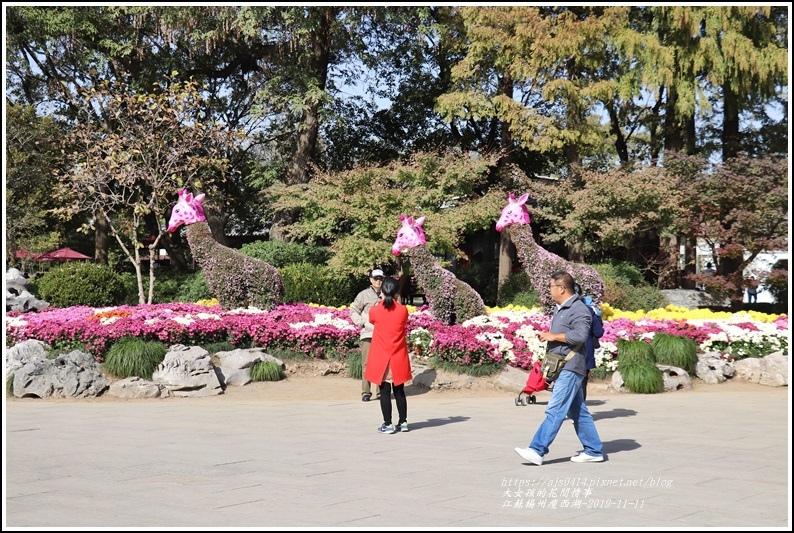 江蘇揚州瘦金湖-2019-11-118.jpg
