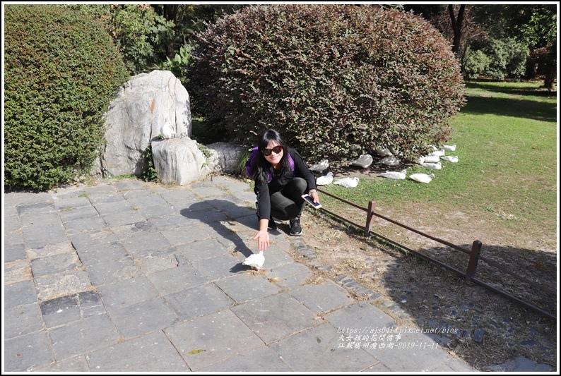 江蘇揚州瘦金湖-2019-11-130.jpg