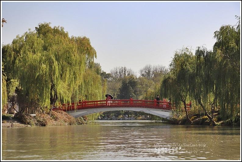江蘇揚州瘦金湖-2019-11-147.jpg