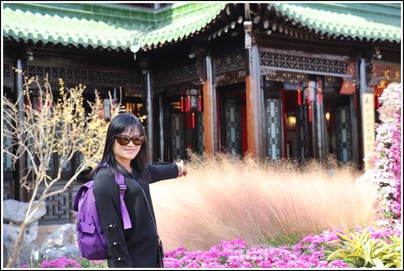 江蘇揚州瘦金湖-2019-11-168.jpg