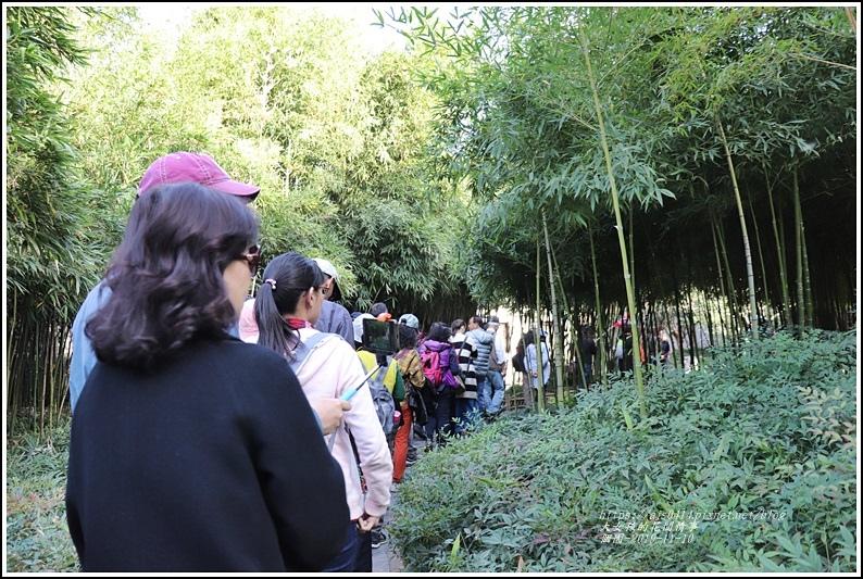 江蘇揚州個園-2019-11-85.jpg