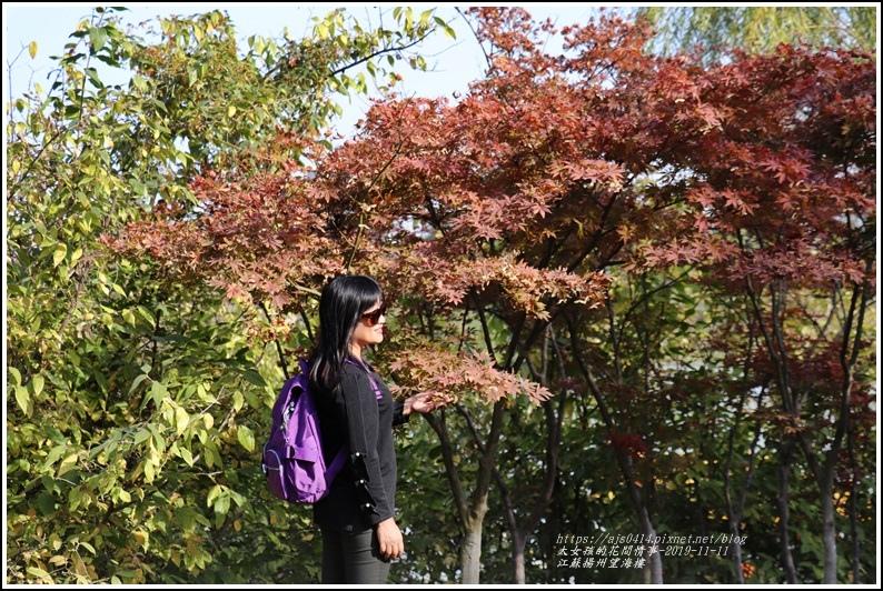 江蘇揚州望海樓-2019-11-60.jpg
