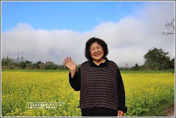 花蓮193油菜花(樂德公路)-2019-12-13.jpg