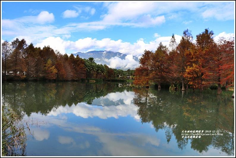 雲山水植物農場-2019-12-07.jpg