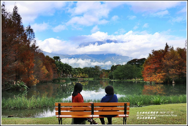 雲山水植物農場-2019-12-01.jpg