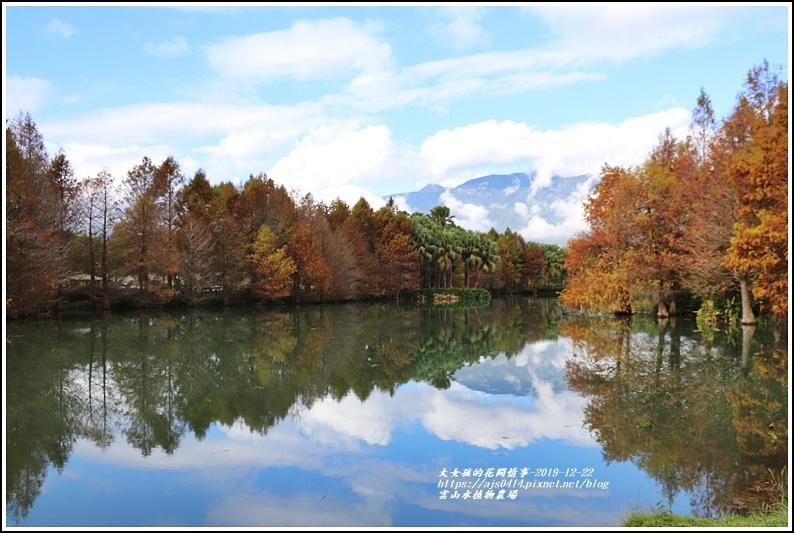 雲山水植物農場-2019-12-13.jpg