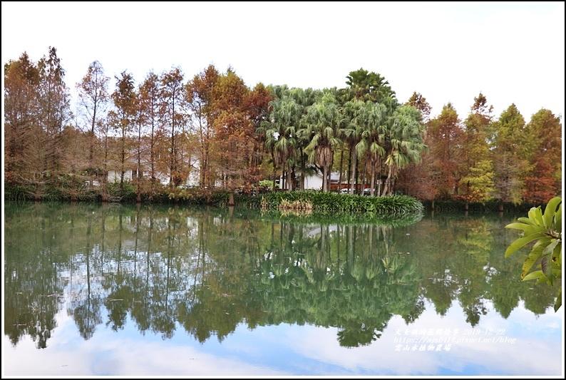 雲山水植物農場-2019-12-19.jpg