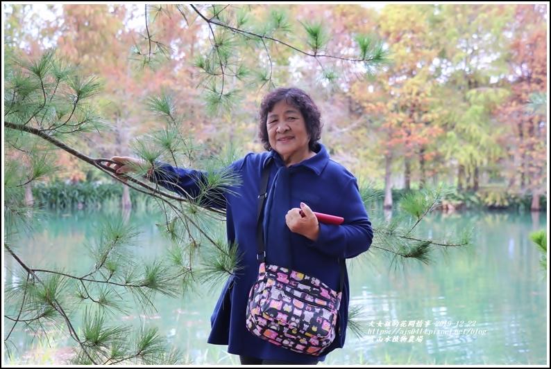 雲山水植物農場-2019-12-27.jpg