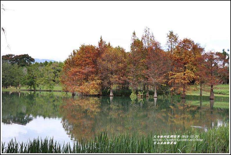 雲山水植物農場-2019-12-51.jpg