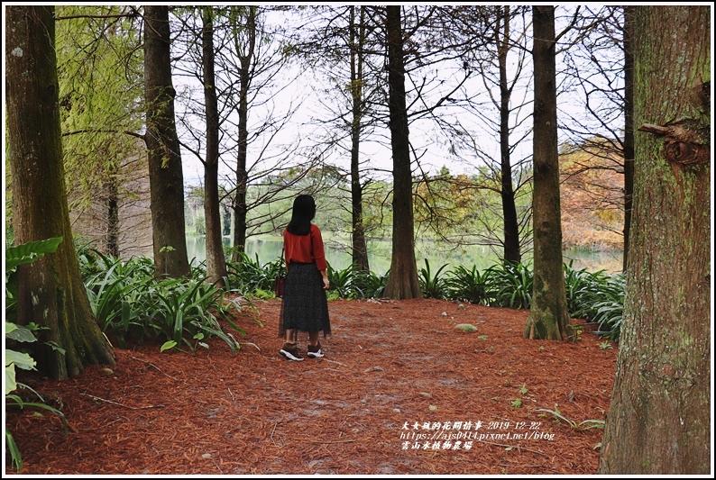 雲山水植物農場-2019-12-54.jpg