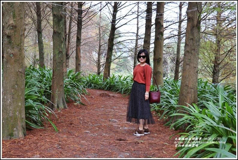 雲山水植物農場-2019-12-55.jpg