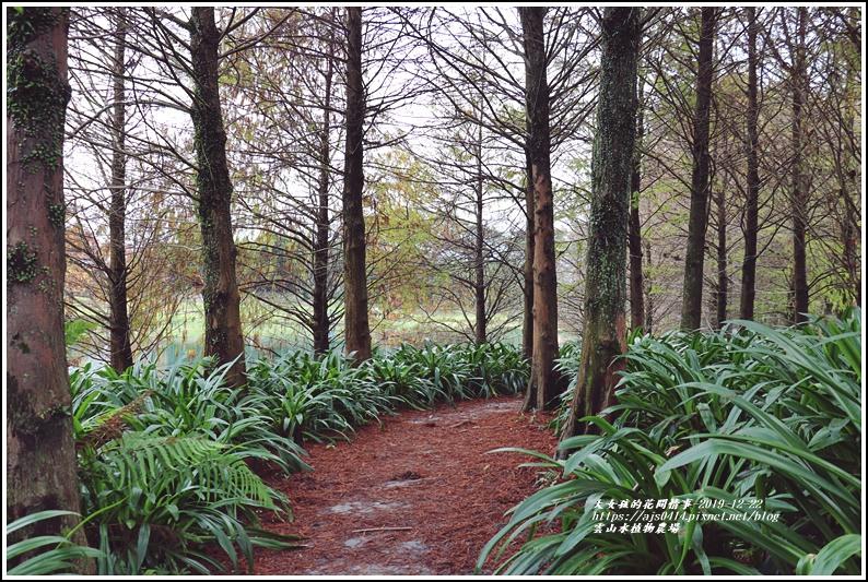 雲山水植物農場-2019-12-60.jpg