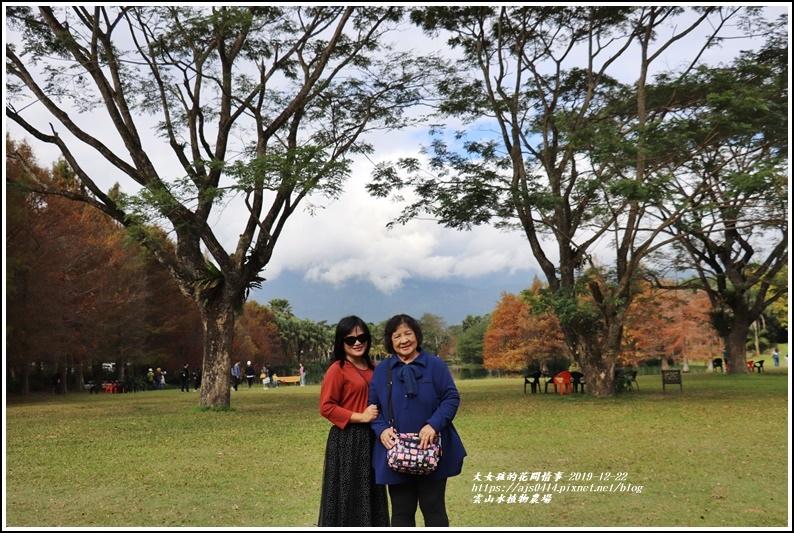 雲山水植物農場-2019-12-70.jpg
