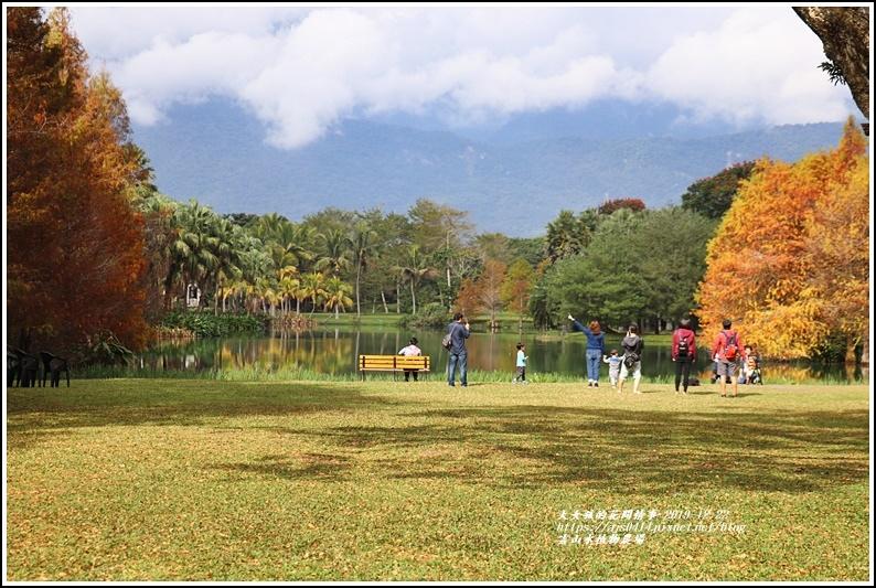 雲山水植物農場-2019-12-75.jpg